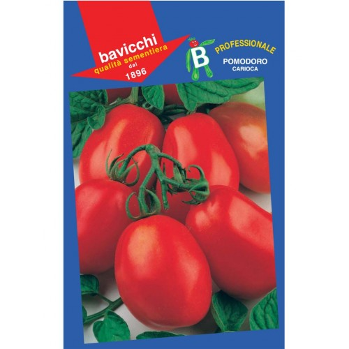 Tomato Seeds, Carioca